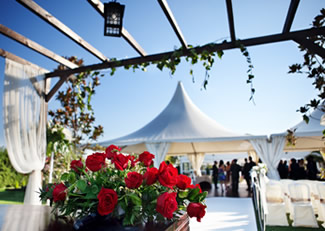 Queens Party Hire – Event and Party Hire Specialists
